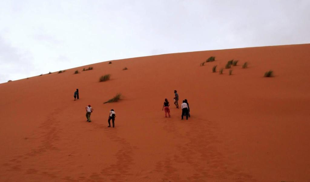 サハラ砂漠 砂漠の丘