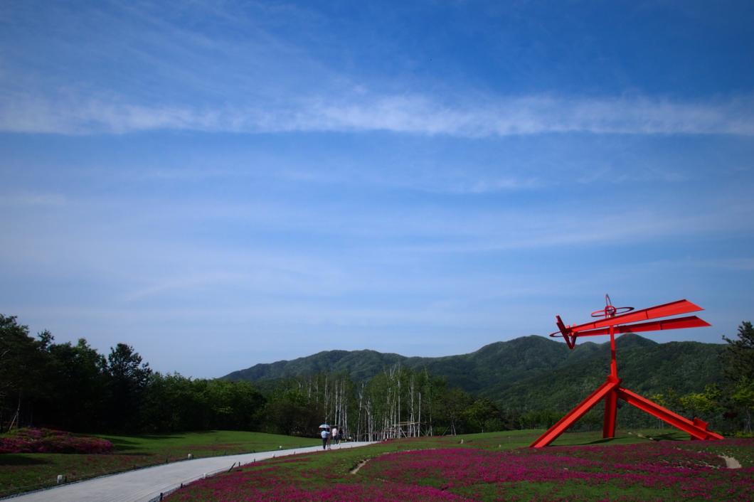 Museum_SAN_flowers