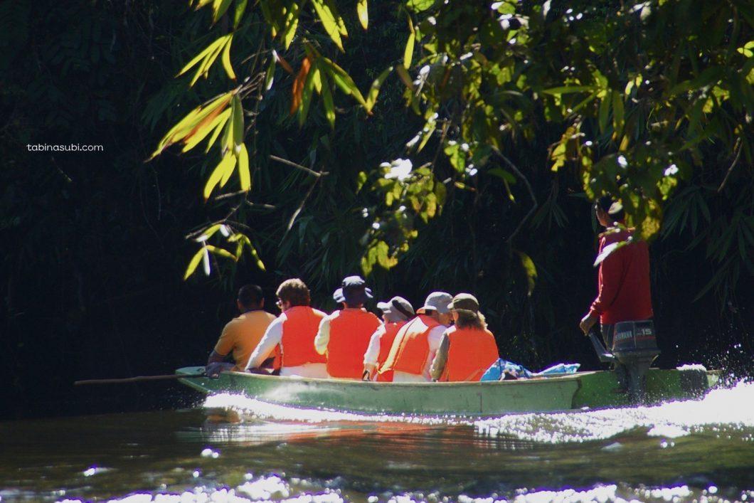 Borneo_mulu