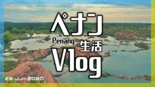 たびなすび Vlog カエルの丘